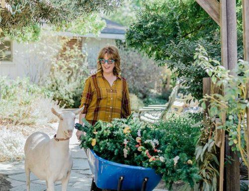 Basilwood Farm Friends, Florals, and Fun! (Part 1)